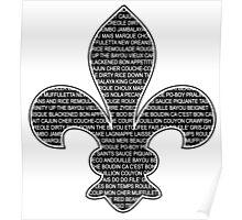 Louisiana Fleur De Lis (Louisiana / Cajun wording) Poster