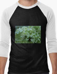 Delightful Delusion Men's Baseball ¾ T-Shirt