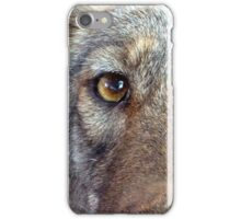 The Coyote 2 iPhone Case/Skin