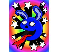 Star-struck Rabbit Photographic Print