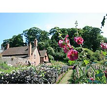 The Dream Garden (2), Dunster Castle and Gardens Photographic Print