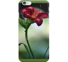 Daylily - Fading Glory iPhone Case/Skin