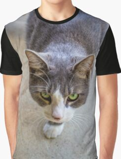 Australian Grey Cat Graphic T-Shirt