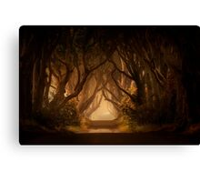 Sunny morning in Dark Hedges Canvas Print