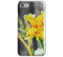 Garden Scene-78226 iPhone Case/Skin