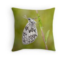 Marbled White Butterfly Throw Pillow