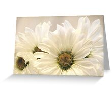 Gathering Daisies Greeting Card