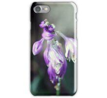 Garden Scene-84779 iPhone Case/Skin