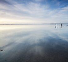 Beach Walkers by Heidi Stewart