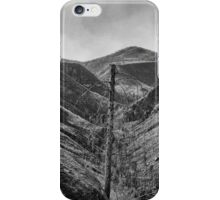 After The 2000 Cerro Grande Fire Los Alamos II iPhone Case/Skin