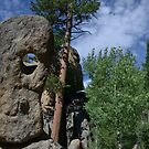 Rock face on a sunny day by Amanda Huggins