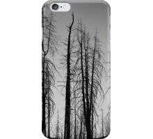 After The 2000 Cerro Grande Fire Los Alamos iPhone Case/Skin
