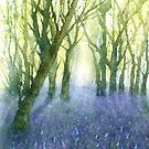 Bluebell Woods (Original painting sold) by Jacki Stokes