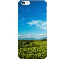 gravepine fields in the italian countryside iPhone Case/Skin