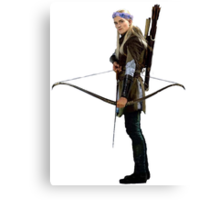 legolas with flower crown Canvas Print