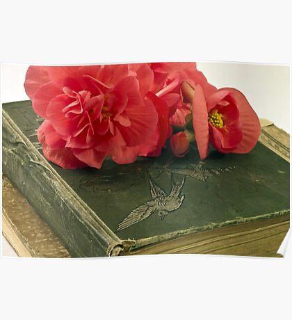 Begonias On Vintage Books Poster