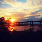 Sunset from a moving train by ShellyKay