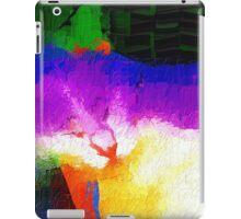 Colorful sleeping cat iPad Case/Skin