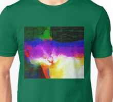 Colorful sleeping cat Unisex T-Shirt