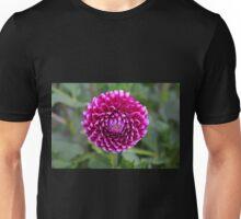 Tantalizing Trailblazer Unisex T-Shirt
