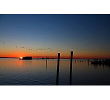 Sunset Migration Photographic Print