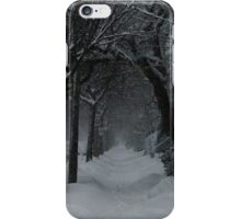 Winter Scene in Montreal iPhone Case/Skin
