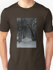 Winter Scene in Montreal T-Shirt