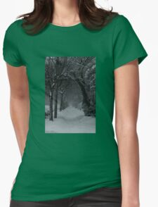 Winter Scene in Montreal Womens Fitted T-Shirt