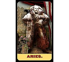 ARIES - from the Midway Arcana Photographic Print