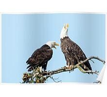 Eagle Chatter Poster