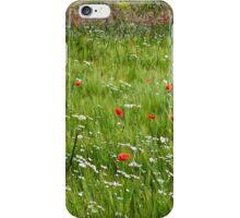 A barley field iPhone Case/Skin