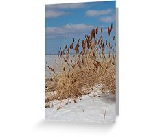 Tame a Wild Wind (vertical) Greeting Card