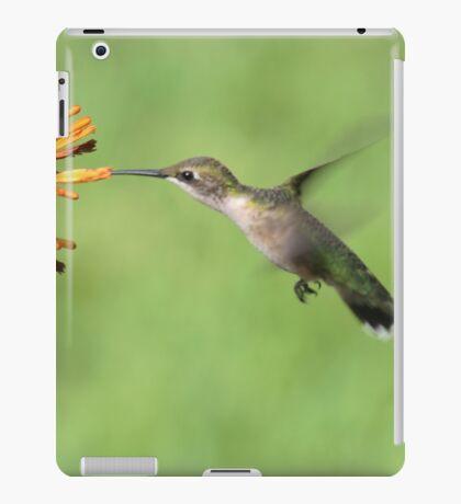 Ruby Throat Hummingbird iPad Case/Skin