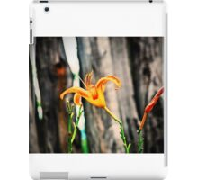 Garden Scene-008224 iPad Case/Skin