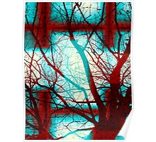 Harmonious Colors - Red White Turquoise Poster