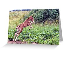 """""""Leap For Joy"""" Greeting Card"""