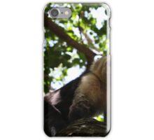 Monkey in Honduras iPhone Case/Skin