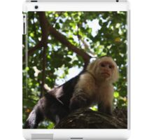 Monkey in Honduras iPad Case/Skin