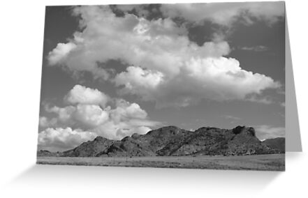 Snake Valley B&W by elasita