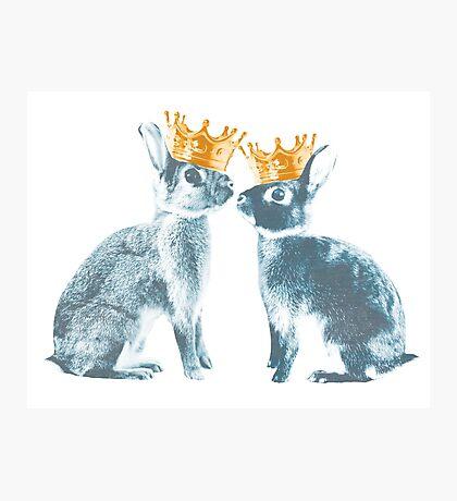 Britannia Elite - Blue | Britannia Petite Show Rabbit Bunny Fancy Rare Cute Royalty Crown King Queen Photographic Print