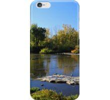 Providence Park iPhone Case/Skin
