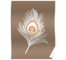 White Peacock Feathers on Taupe Tan Poster