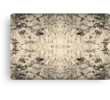 Flower in mirror - sepia Canvas Print