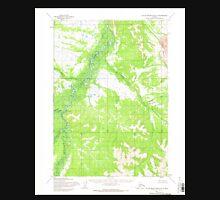 USGS TOPO Map Alaska AK Taylor Mountains D-5 359877 1954 63360 Unisex T-Shirt