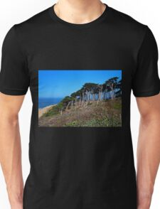 Lands End in San Francisco Unisex T-Shirt