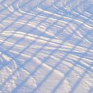 Snow by elasita