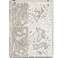 Vintage Map of The Lakes and Islands of The World iPad Case/Skin