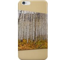 Aspen And Ferns (A 60 x 20 canvas print galley wrapped) iPhone Case/Skin