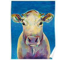 Colorful Cow on Blue Background Painting Poster