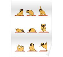 Funny Yoga Dog Poster